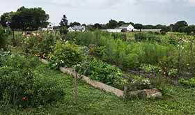 Conserve-Farm-ACT