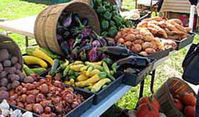 Conserve-Farm-Bally-Machree