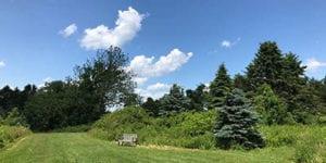 Spruce Acres Farm Available