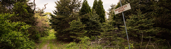 Ways-to-Give-Spruce-Acres