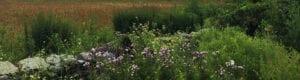 contact Aquidneck Land Trust