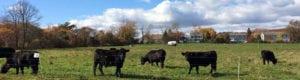 farmlink-conservation-plan-header