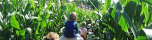 Aquidneck Farmlink Succession Planning