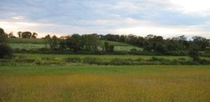 Aquidneck Island Farmland