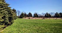 Aquidneck Land Trust NDN